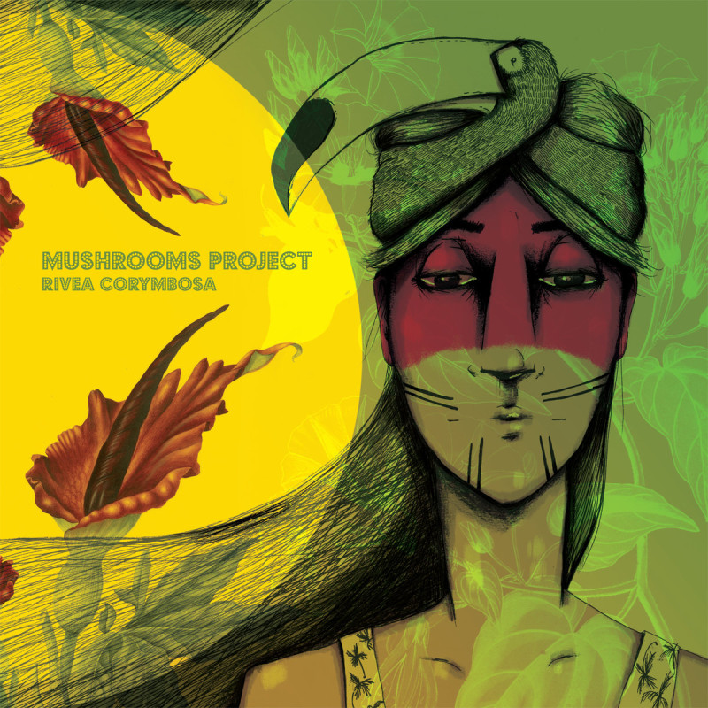 mushrooms-project-rivea-corymbosa