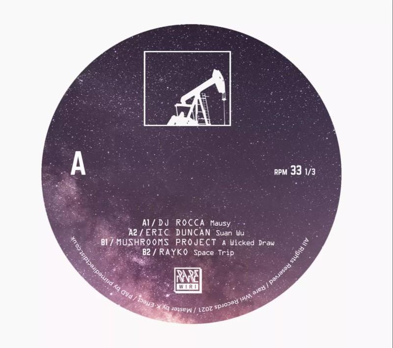 Dj Rocca / Eric Duncan / Mushrooms Project / Rayko - Rare Wiri 100th [Rare Wiri Records]